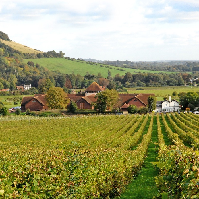 Denbies Wine Estate Surrey Sydengland