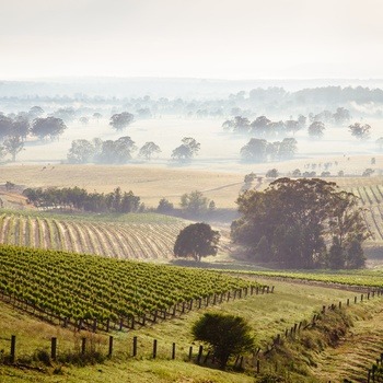 Hunter Valley i New South Wales
