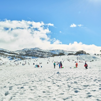 På ski om vinteren i Snowy Mountains, New South Wales i Australien
