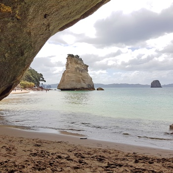 Cathedral Cove på Coromandel-halvøen - Nordøen i New Zealand