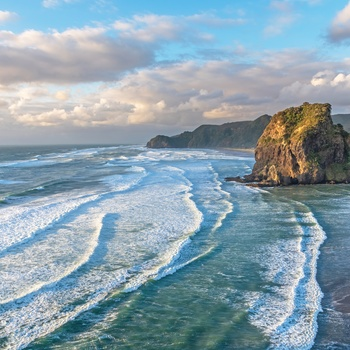 Stranden Piha Beach og Lion Rock i Waitakere Ranges Regional Park - Nordøen i New Zealand
