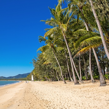 Tropisk strand i Far North Queensland, Australien