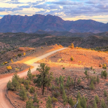 Dirtroad mod Flinders Ranges og Wilpena Pound i South Australia