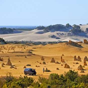 The Pinnacles i Nambung National Park, Western Australia