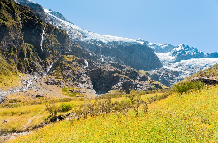 New Zealand Mount Aspiring National Park Rob Roy Glacier