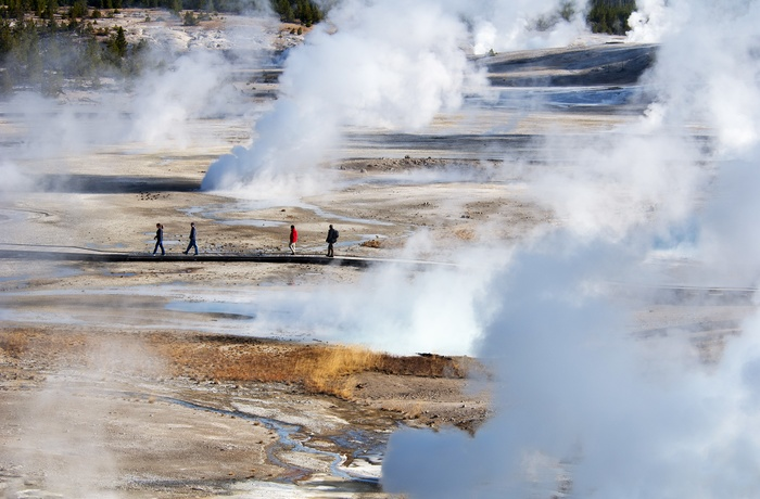 USA Yellowstone National Park Norris Geyser Basin