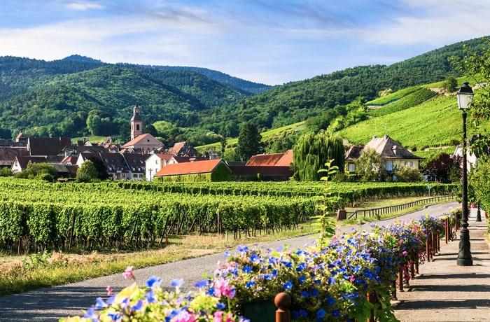 Route Des Vins D Alsace Fdm Travel