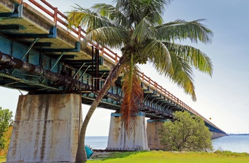 Bor over Pigeon Key, ø langs Overseas Highway til Key West, Florida