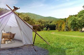 Glamping i Great Smoky Mountains, Safari