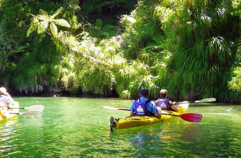 Kayaking Queens Charlotte Sound