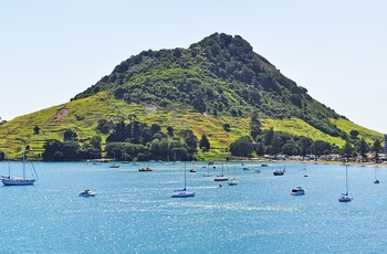 New Zealand Bay of Plenty Tauranga Mount Maunganui
