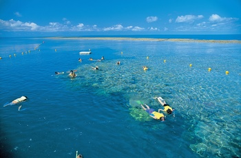 Whitsunday Island - snorkling ved Hardy Reef, Australien - copyright Jason Hill and Tourism & Events Queensland