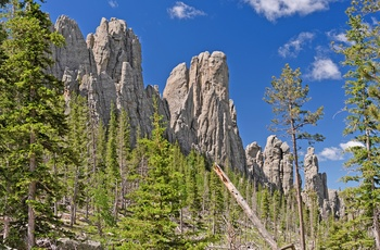 Black Hills i Custer State Park i South Dakota, USA