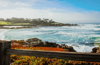 USA Californien Highway 1 17 Mile Drive