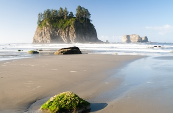 USA Washington Olympic National Pacific Ocean Shore
