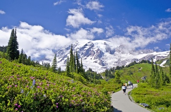 På vandring i Mount Rainier National Park i Washington State, USA