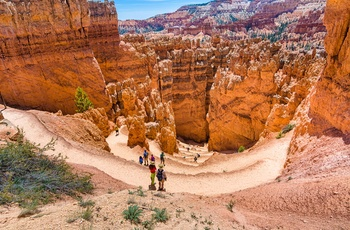 Turister i Bryce Canyon National Park